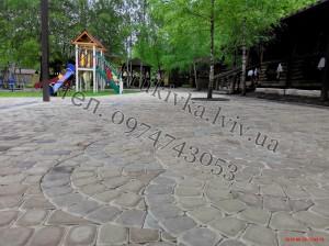 PenkuLviv - 0005